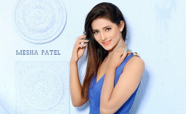 independent MESHA-VIP-indian Model (Dubai)